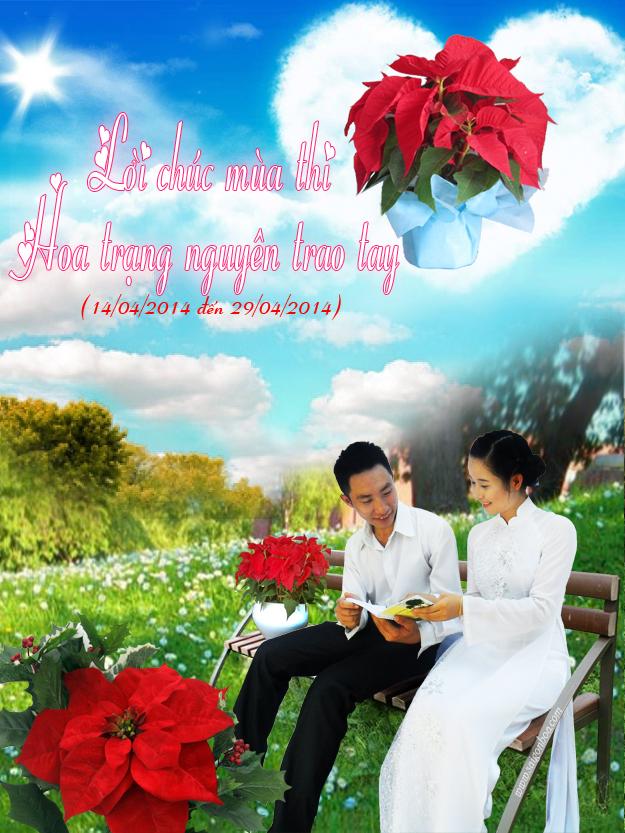 Hoa trang nguyen trao tay copy
