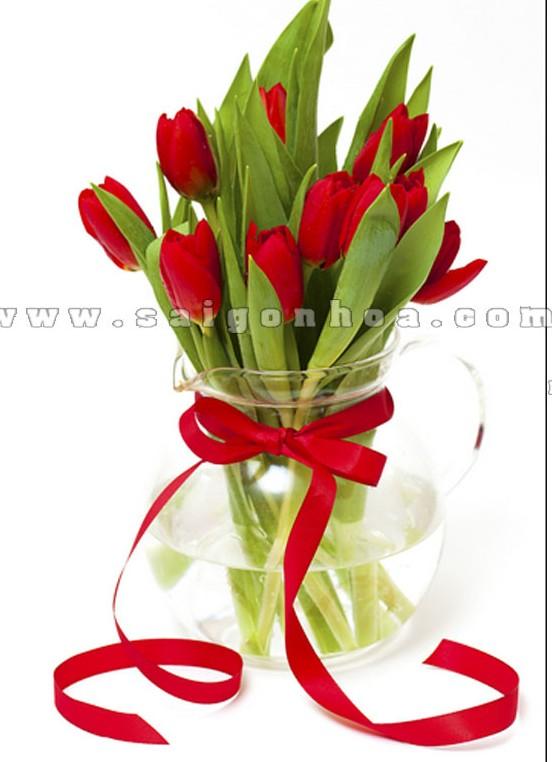binh hoa tulip mau do