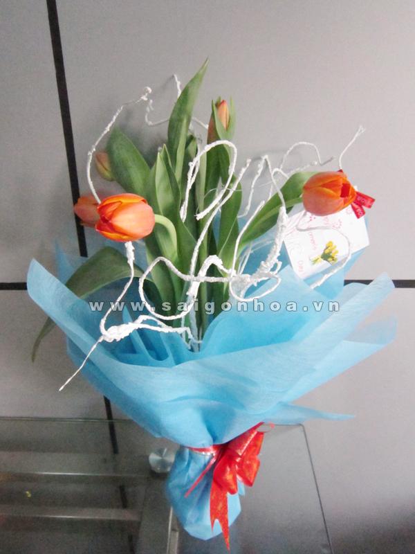 bo hoa Tulip mau cam