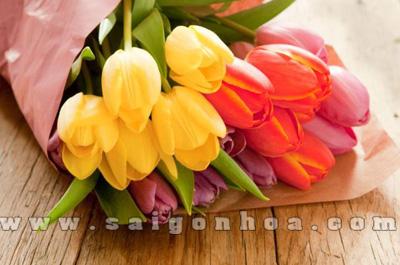 bo hoa tulip dep