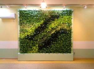 Tường cây di động nội thất