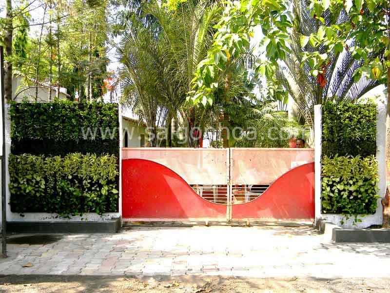 Tường cây lối đi trước công nhà