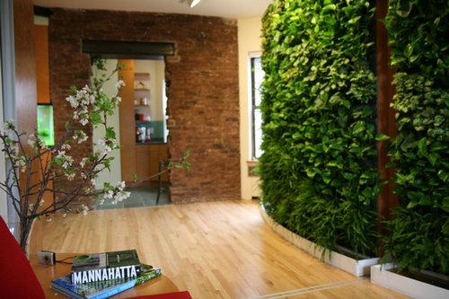 Tường cây trong nhà