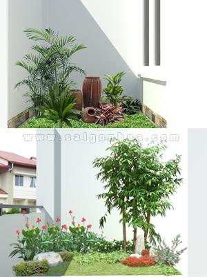 Tiểu cảnh sân vườn nhà Chị Tú