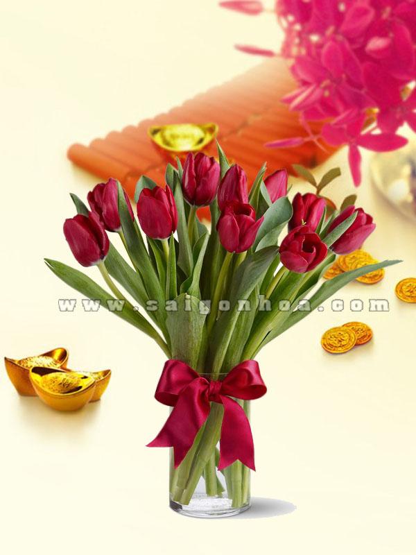 hoa Tulip tet