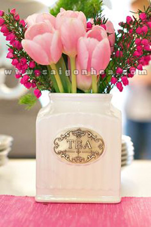 hoa tulip dep