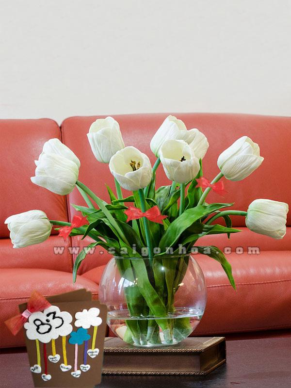 hoa tulip ngay 8-3