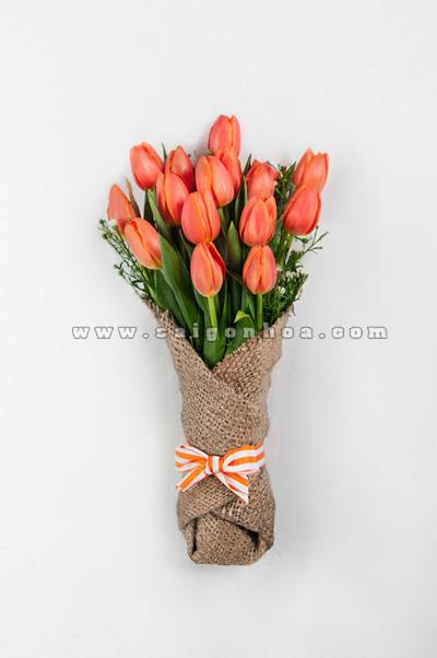 hoa tulip tang Valentine