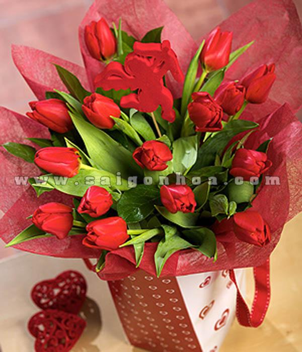 hoa tulip tang nguoi yeu