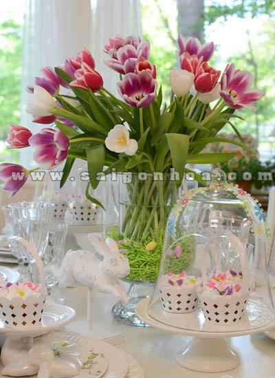 hoa tulip trang tri ban an