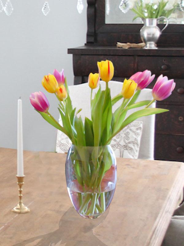 hoa tulip trong nuoc de ban
