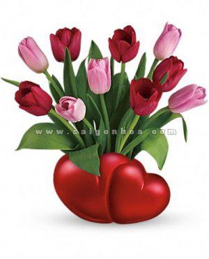 hoa tulip valentine 9