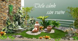 Tiểu cảnh và sân vườn