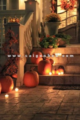 trang tri halloween