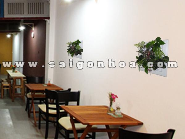 trang tri quan cafe voi tranh cay treo tuong