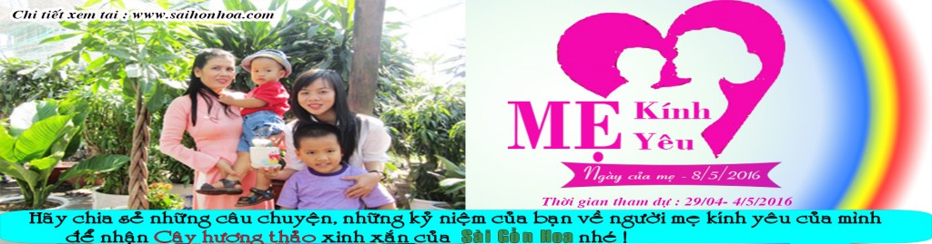 banner ngay cua me