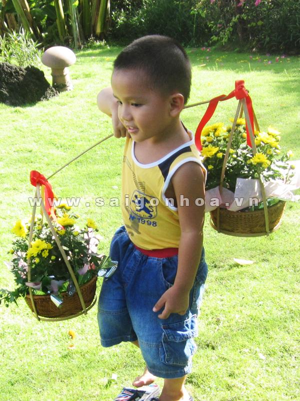 ganh hoa cuc