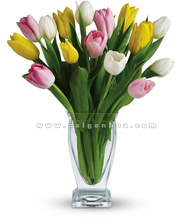 binh hoa tulip dep trong chau thuy tinh