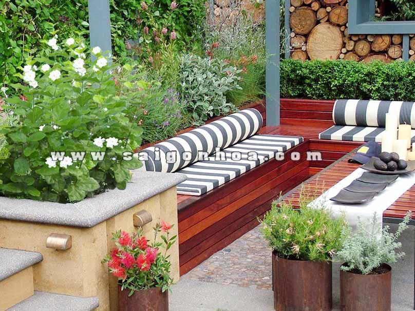 cay hoa nhai trong patio 2 - Bật mí những loài hoa dễ trồng cho khu vườn nhà bạn