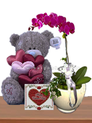 chau ho diep tim 1 canh tang valentine