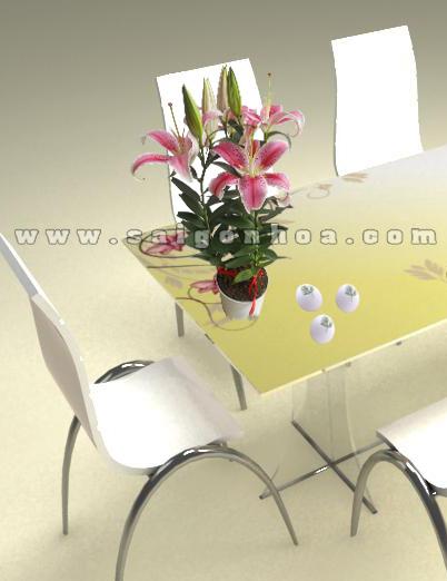chau hoa lily hong 2