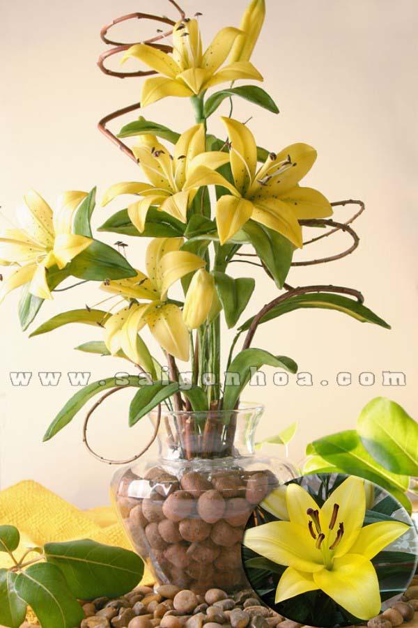 Chau Hoa Lily Vang 6