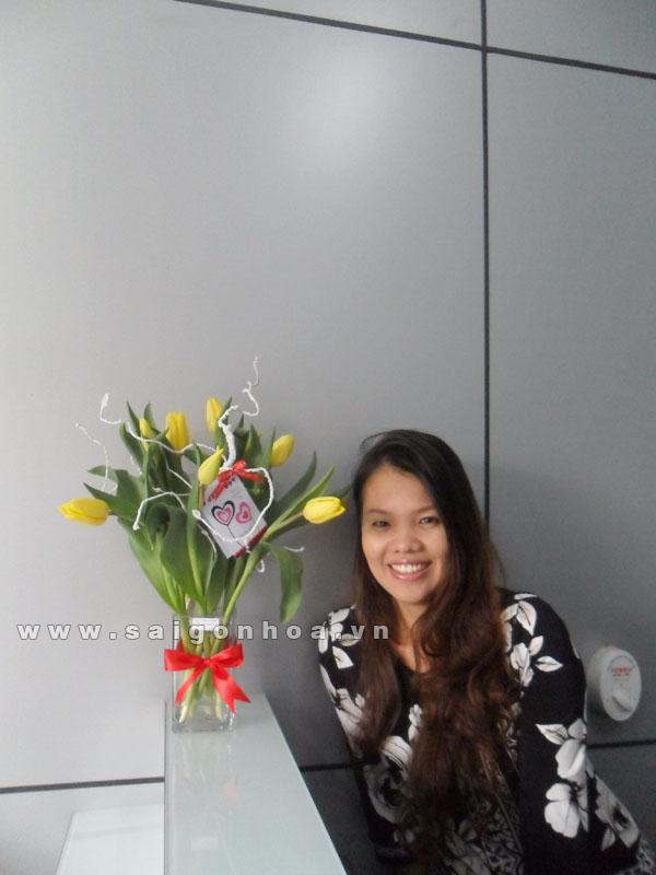 hoa tulip 3