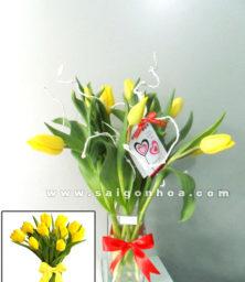 Hoa Tulip Vang 1