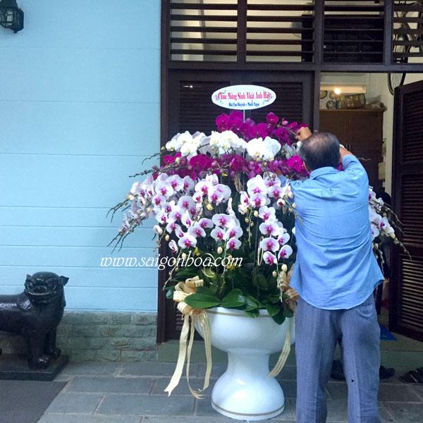 Lan Ho Diep Nhieu Canh 1
