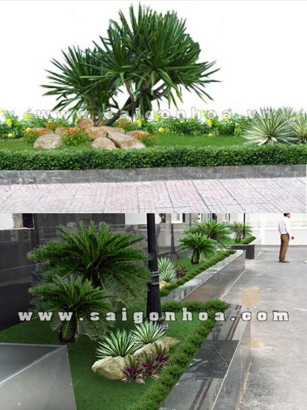 Tieu Canh Ben Hong Nha