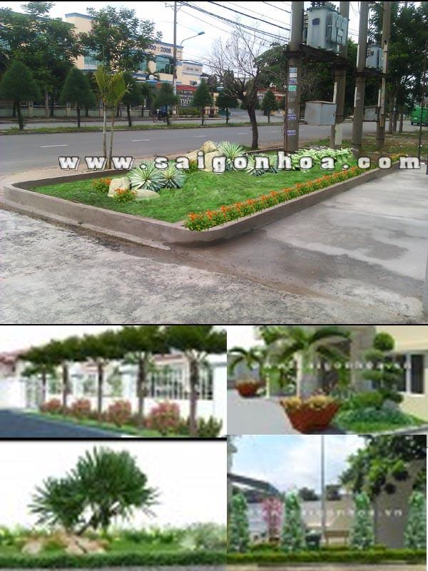 Tieu Canh Truoc Van Phong Cong Ty
