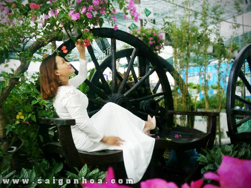 Banh Xe Bo Tieu Canh San Vuon