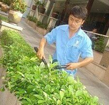 Bao Duong Canh Quan1 E1558767767781