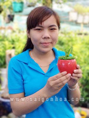 chau may man phat tai (2)