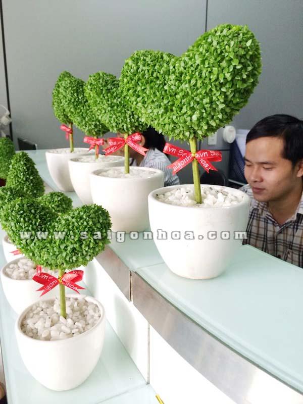 May Man Tinh Yeu Trang Tri