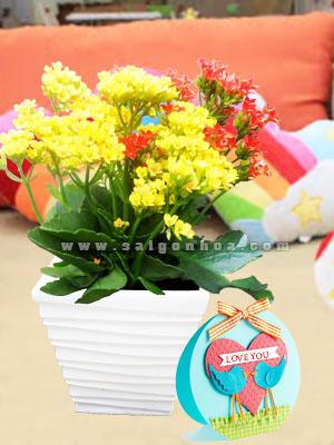 chau hoa song doi tang le tinh nhan