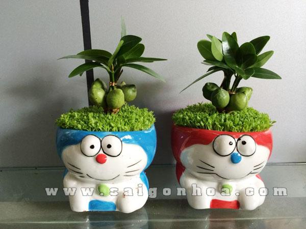 Cay May Man Tai Loc Doraemon