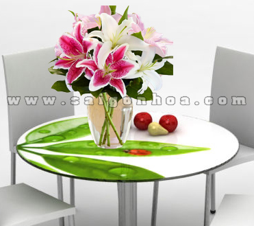hoa lily trong nuoc 6
