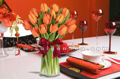 hoa tulip mau cam trang tri Tet