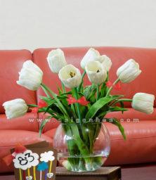 Hoa Tulip Mung 8 Thang 3