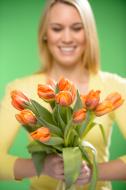 hoa tulip ngay quoc te phu nu