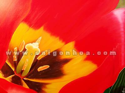 nhuy hoa tulip mau do