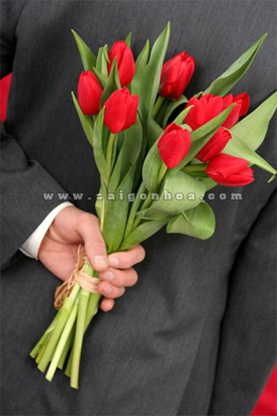 tang hoa tulip ngay tinh yeu