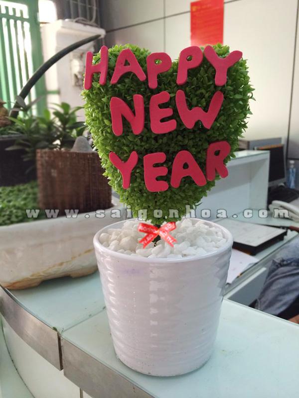 cay may man tinh yeu happy new year