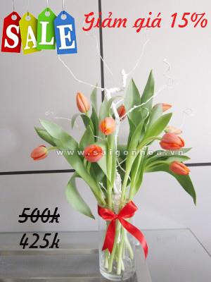 hoa tulip cat canh giam gia