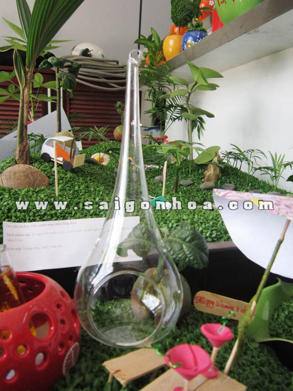 Chau Thuy Tinh Hinh Giot Nuoc