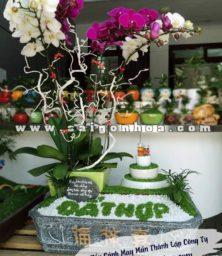 Tieu Canh May Man Thanh Lap Cong Ty