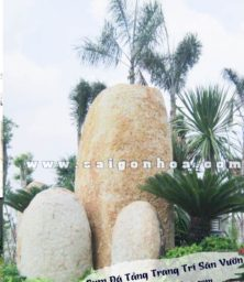 Da Tang Trang Tri San Vuon