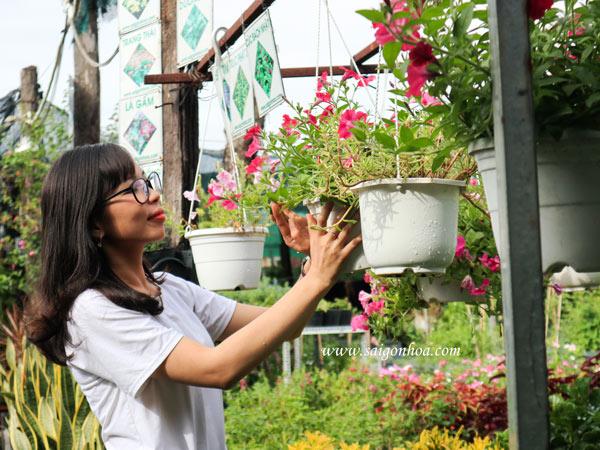 Biến ban công thành khu vườn sinh thái với hoa treo
