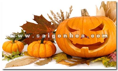 bi ngo dem halloween